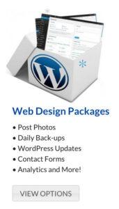 wordpress website maintenance package