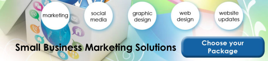 small-business-marketing-solutions-lansing-michigan