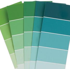 Spot Color Graphic